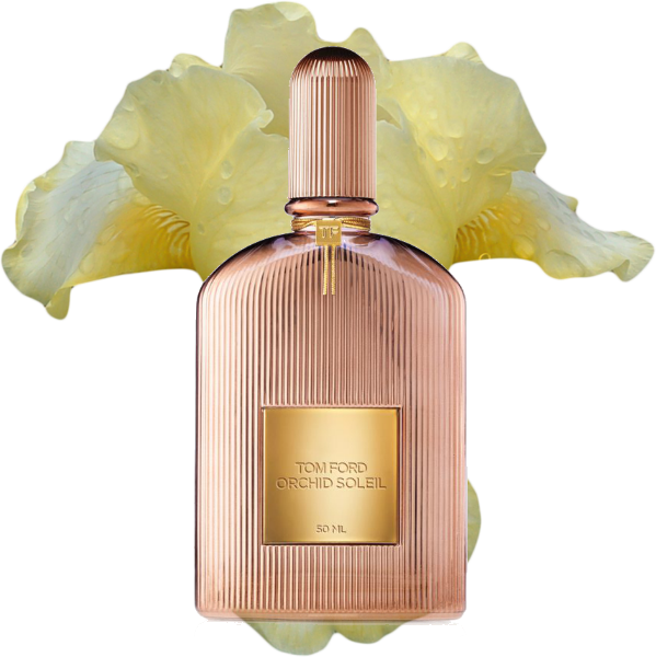 Tom Ford Orchid Soleil at reastars.co.uk
