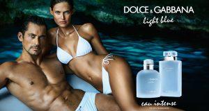 dolcegabbana light blue eau intense