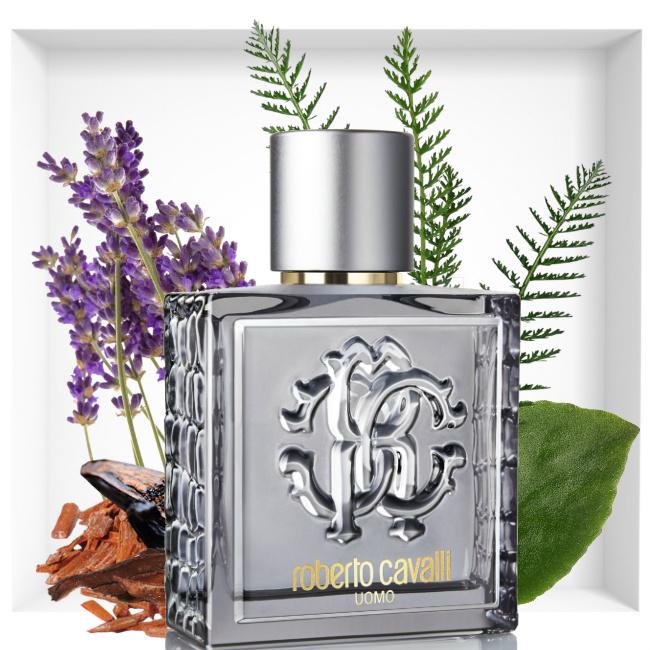 Roberto Cavalli Uomo Silver Essence fragrance