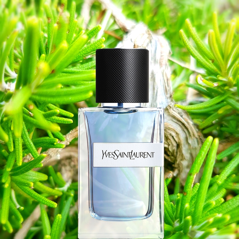 Y, the new masculine fragrance by Yves Saint Laurent