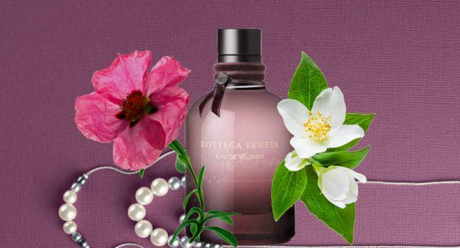 Eau de Velours Perfume for Women by Bottega Veneta