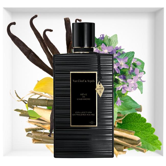 Rêve de Cashmere perfume