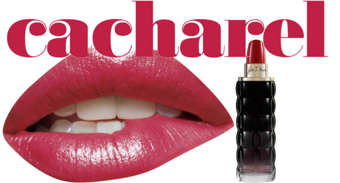 chacharel yes i am new perfume