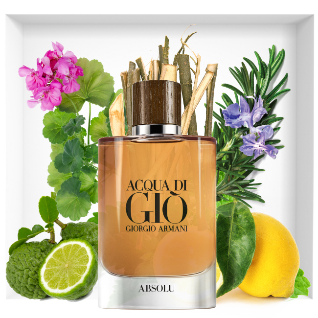 Acqua Di Giò Absolu Fragrance A Sophisticated And Sensual Fragrance For Men, Infused With Marine Notes And Patchouli.