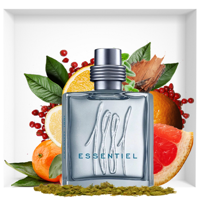 Cerruti 1881 Essentiel is a spicy fragrance in the image of a day in Tuscany.