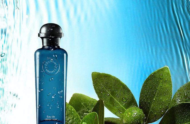 coach floral eau de parfum reastars perfume and beauty