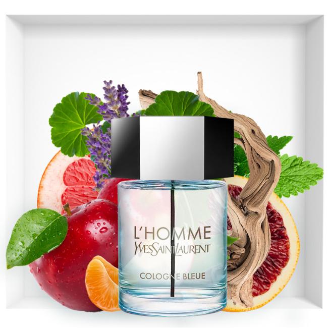 L'Homme Cologne Bleue Yves Saint Laurent new 2018 fragrance