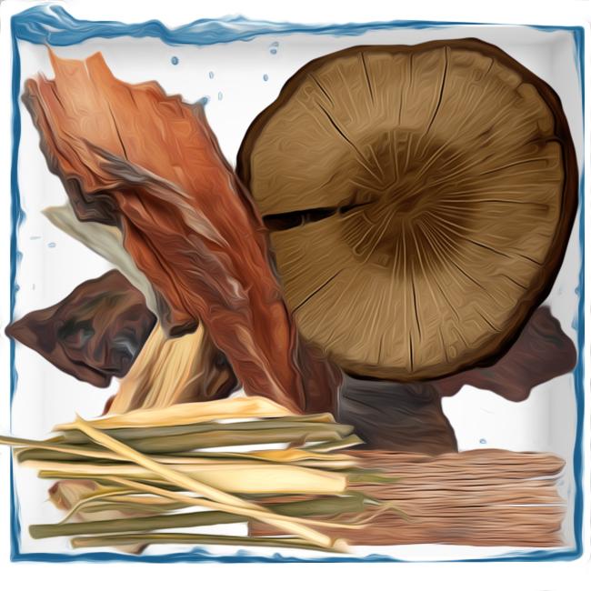 woody olfactory perfume group