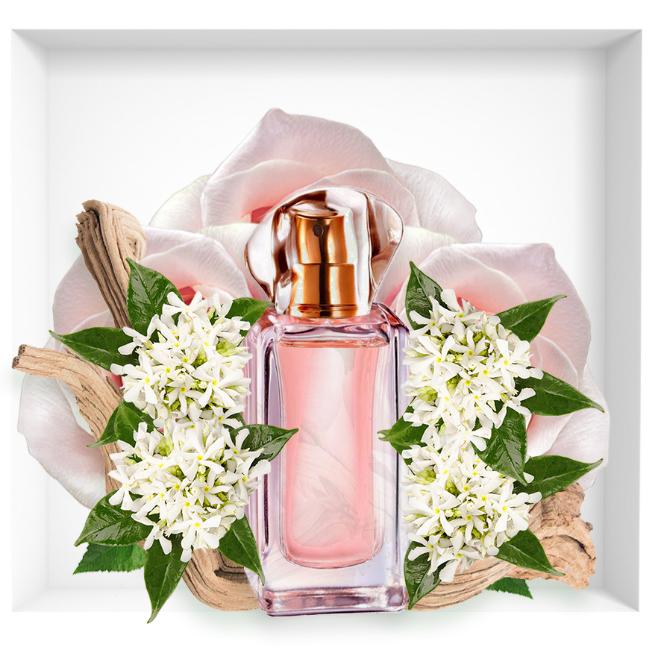 Avon Always new perfume 2018 eau de parfum