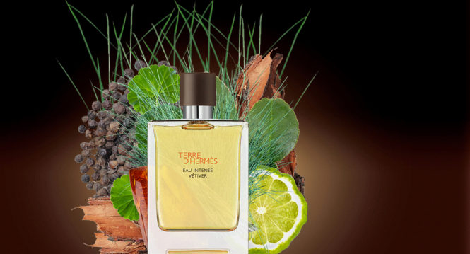 Terre d'Hermès Eau Intense Vétiver new perfume for men 2018