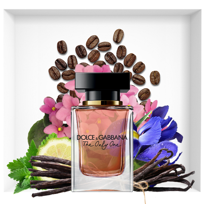 Dolce & Gabbana The Only One new perfume 2018