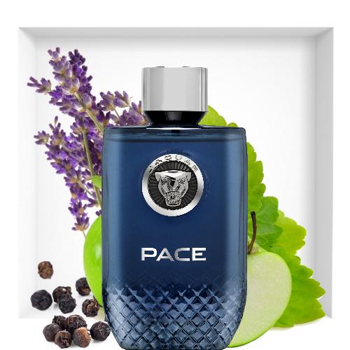 jaguar pace accelerate fragrance reastars perfume and. Black Bedroom Furniture Sets. Home Design Ideas