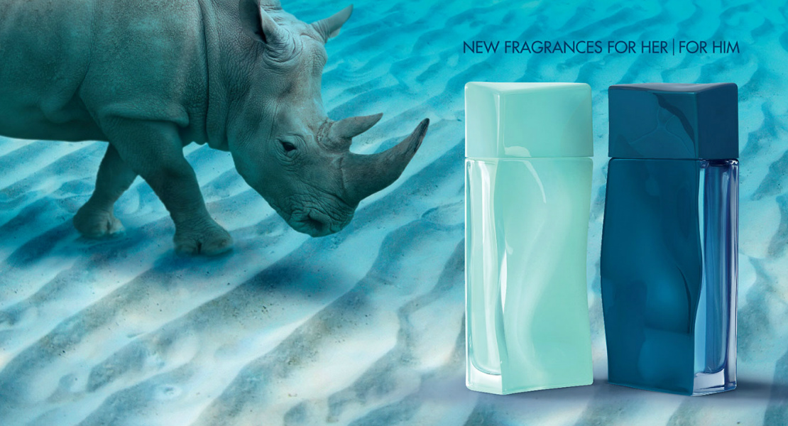Perfume Fragrance – The Kenzo And New From Duo AquaReastars W2EID9HY