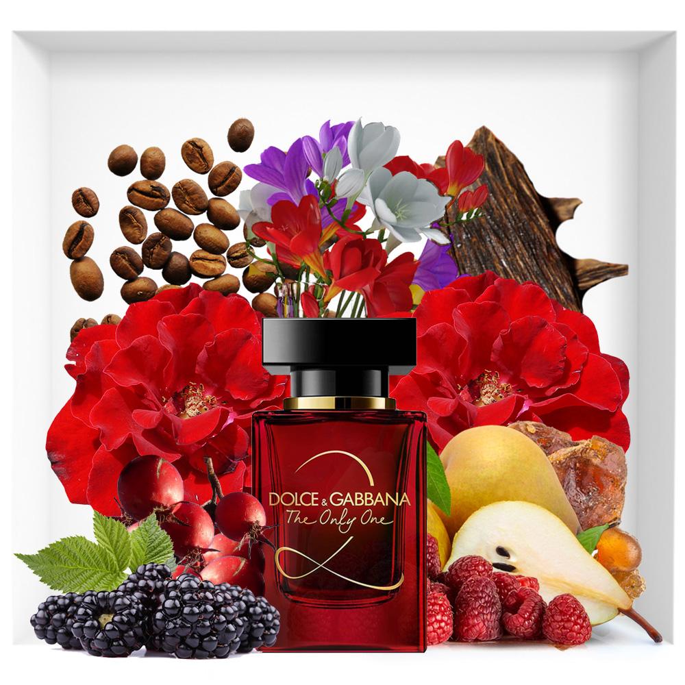 The Only One 2 Dolce & Gabbana Eau de Parfum new perfume